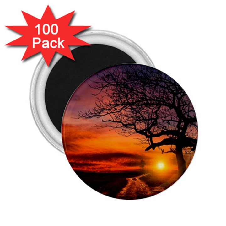 Lonely Tree Sunset Wallpaper 2.25  Magnets (100 pack)