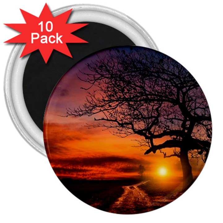 Lonely Tree Sunset Wallpaper 3  Magnets (10 pack)