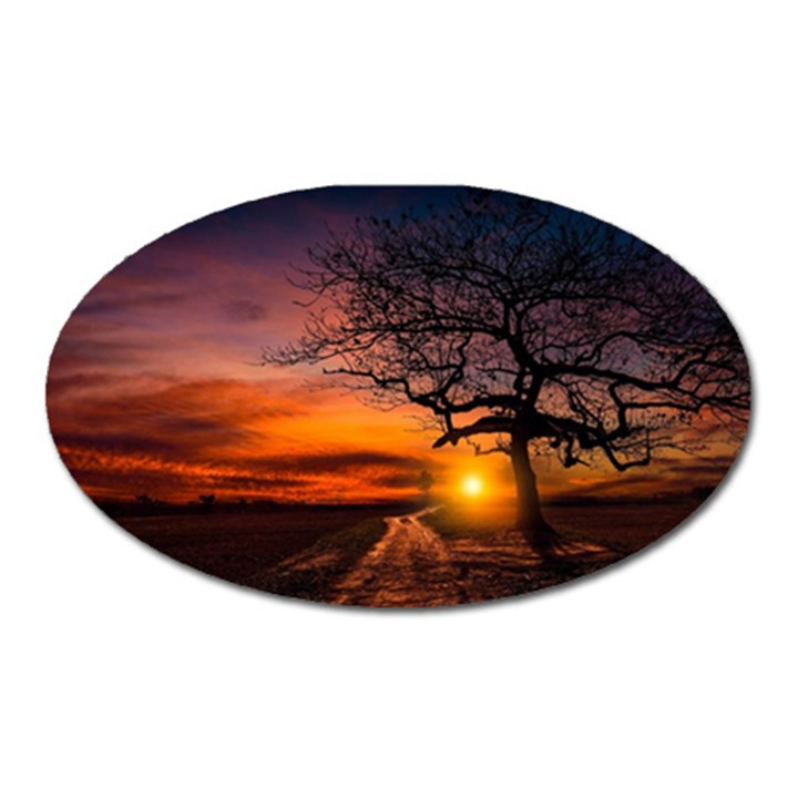 Lonely Tree Sunset Wallpaper Oval Magnet