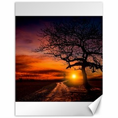 Lonely Tree Sunset Wallpaper Canvas 12  x 16