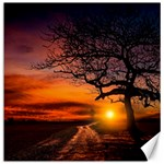 Lonely Tree Sunset Wallpaper Canvas 16  x 16  16 x16  Canvas - 1