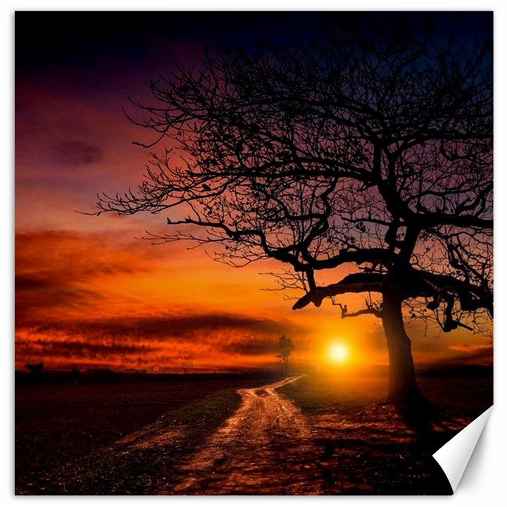 Lonely Tree Sunset Wallpaper Canvas 16  x 16