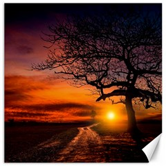 Lonely Tree Sunset Wallpaper Canvas 20  x 20