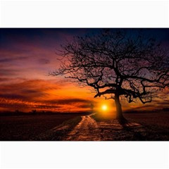 Lonely Tree Sunset Wallpaper Canvas 20  x 30