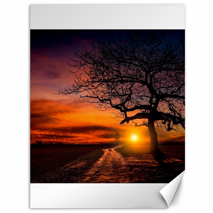 Lonely Tree Sunset Wallpaper Canvas 36  x 48