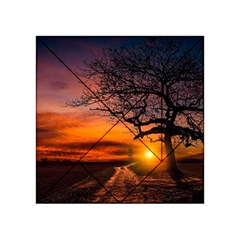 Lonely Tree Sunset Wallpaper Acrylic Tangram Puzzle (4  X 4 )