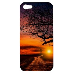 Lonely Tree Sunset Wallpaper Apple iPhone 5 Hardshell Case