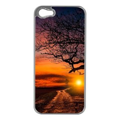 Lonely Tree Sunset Wallpaper Apple iPhone 5 Case (Silver)