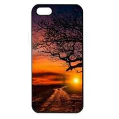 Lonely Tree Sunset Wallpaper Apple iPhone 5 Seamless Case (Black)
