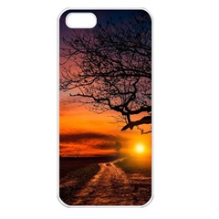 Lonely Tree Sunset Wallpaper Apple Iphone 5 Seamless Case (white) by Alisyart