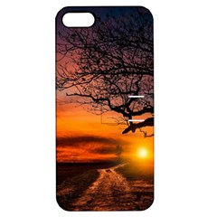 Lonely Tree Sunset Wallpaper Apple Iphone 5 Hardshell Case With Stand