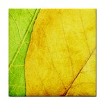 Green Yellow Leaf Texture Leaves Tile Coasters Front