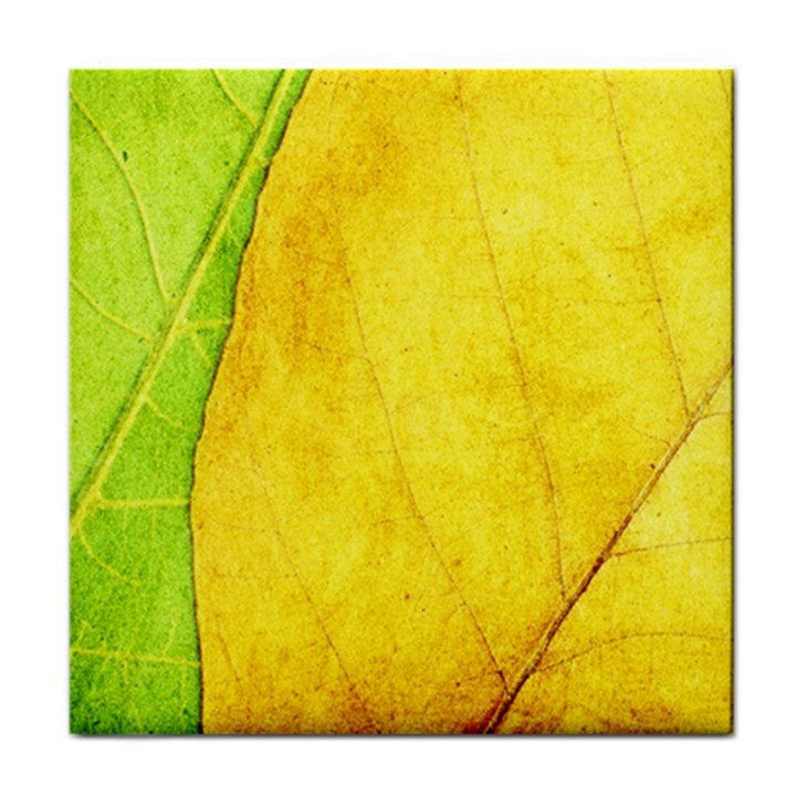 Green Yellow Leaf Texture Leaves Tile Coasters