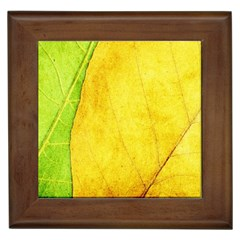 Green Yellow Leaf Texture Leaves Framed Tiles by Alisyart