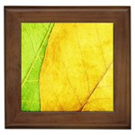 Green Yellow Leaf Texture Leaves Framed Tiles Front