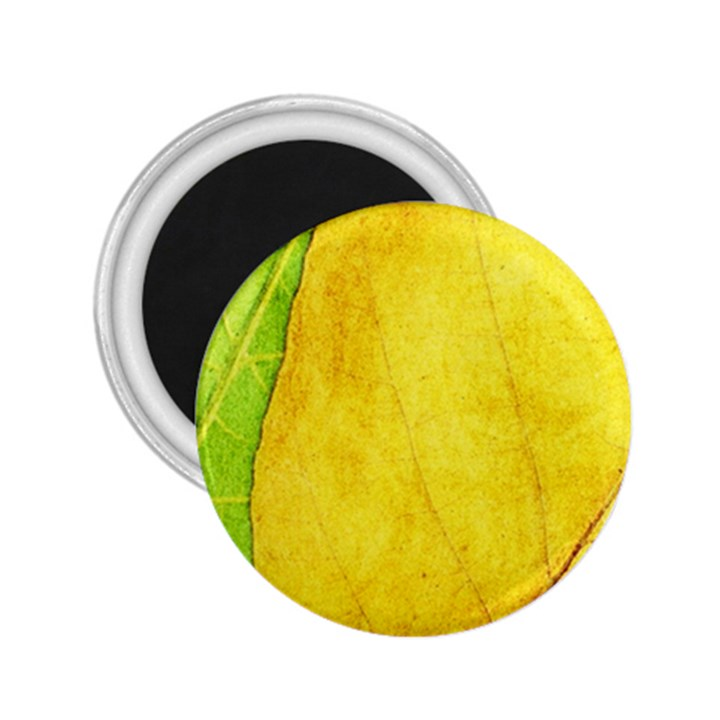 Green Yellow Leaf Texture Leaves 2.25  Magnets