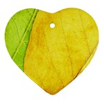Green Yellow Leaf Texture Leaves Ornament (Heart) Front