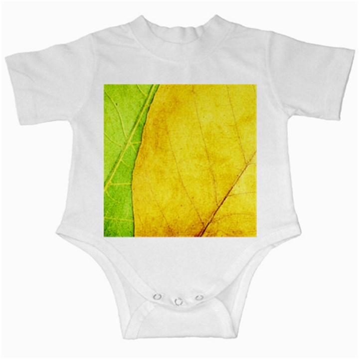 Green Yellow Leaf Texture Leaves Infant Creepers