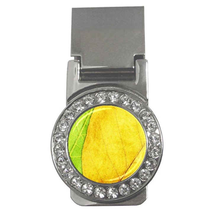 Green Yellow Leaf Texture Leaves Money Clips (CZ)
