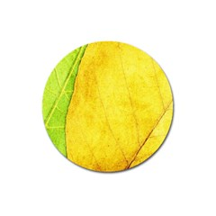 Green Yellow Leaf Texture Leaves Magnet 3  (round)
