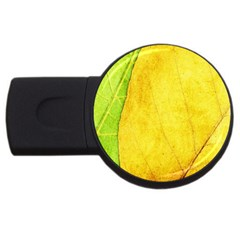 Green Yellow Leaf Texture Leaves Usb Flash Drive Round (2 Gb) by Alisyart