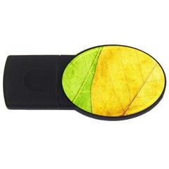 Green Yellow Leaf Texture Leaves Usb Flash Drive Oval (2 Gb) by Alisyart