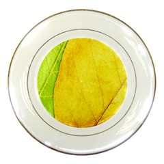 Green Yellow Leaf Texture Leaves Porcelain Plates
