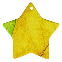 Green Yellow Leaf Texture Leaves Star Ornament (two Sides)