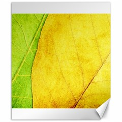 Green Yellow Leaf Texture Leaves Canvas 8  X 10