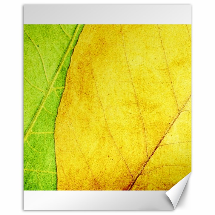 Green Yellow Leaf Texture Leaves Canvas 16  x 20
