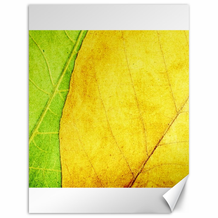 Green Yellow Leaf Texture Leaves Canvas 18  x 24