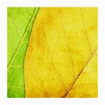 Green Yellow Leaf Texture Leaves Medium Glasses Cloth (2-Side) Back
