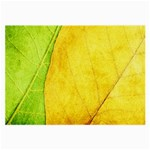 Green Yellow Leaf Texture Leaves Large Glasses Cloth Front