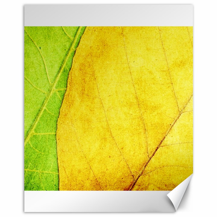 Green Yellow Leaf Texture Leaves Canvas 11  x 14