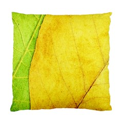 Green Yellow Leaf Texture Leaves Standard Cushion Case (two Sides) by Alisyart