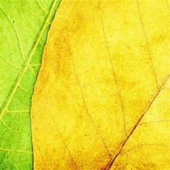 Green Yellow Leaf Texture Leaves Magic Photo Cube