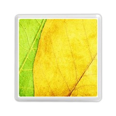 Green Yellow Leaf Texture Leaves Memory Card Reader (square)