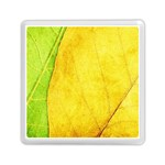 Green Yellow Leaf Texture Leaves Memory Card Reader (Square) Front