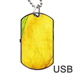 Green Yellow Leaf Texture Leaves Dog Tag Usb Flash (two Sides) by Alisyart