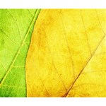 Green Yellow Leaf Texture Leaves Deluxe Canvas 14  x 11  (Stretched) 14  x 11  x 1.5  Stretched Canvas