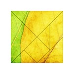 Green Yellow Leaf Texture Leaves Acrylic Tangram Puzzle (4  x 4 ) Front