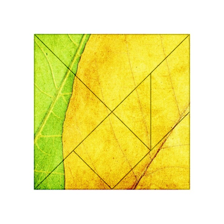 Green Yellow Leaf Texture Leaves Acrylic Tangram Puzzle (4  x 4 )