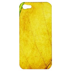 Green Yellow Leaf Texture Leaves Apple Iphone 5 Hardshell Case