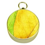 Green Yellow Leaf Texture Leaves Gold Compasses Front