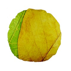 Green Yellow Leaf Texture Leaves Standard 15  Premium Flano Round Cushions