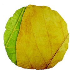 Green Yellow Leaf Texture Leaves Large 18  Premium Flano Round Cushions