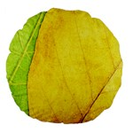 Green Yellow Leaf Texture Leaves Large 18  Premium Flano Round Cushions Back