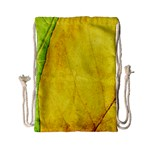 Green Yellow Leaf Texture Leaves Drawstring Bag (Small) Back
