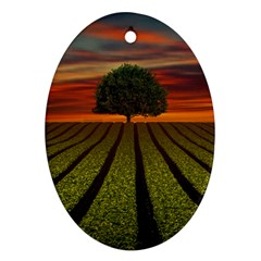 Natural Tree Ornament (oval) by Alisyart