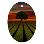 Natural Tree Ornament (Oval) Front